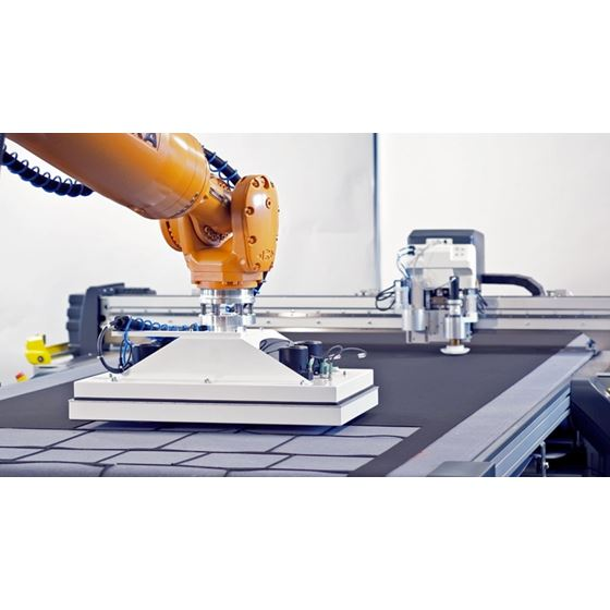Robot and gripper system